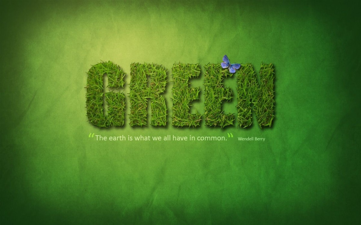 How to manage environmental considerations