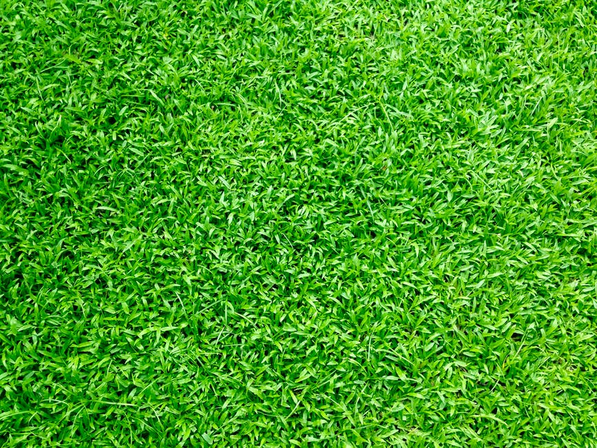 Changing your job? Make sure the grass is really greener