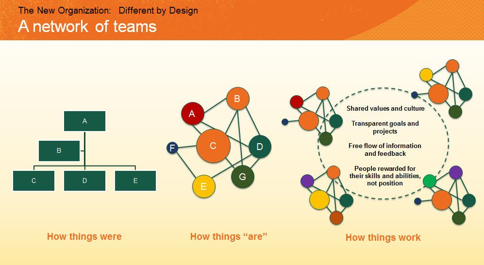 The new organisation Different by Design a network of teams